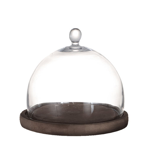 GLASS DOME MIRROIRS M